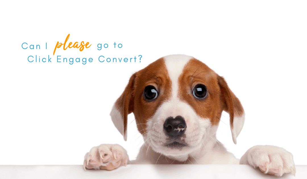 Email Swipe Copy: I'd like to attend Click Engage Convert